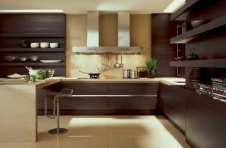 Встроенная кухня с фото-примерами