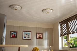ПВХ панели для кухни, какие они бывают и как применяются?